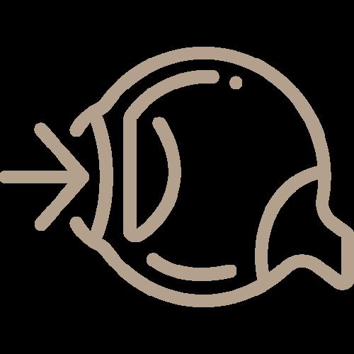 Control Tensión Ocular